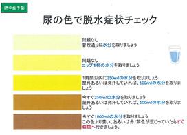 おしっこ が 黄色 尿の色が濃い|なぜおしっこの色が茶色っぽく濃くなるのか?ビリルビ...